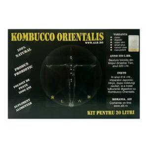 Kombucco Orientalis KIT 20 litri